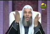 كلمة الشيخ محمد حسان لكل المصرين( 23/1/2013)جبريل يسأل والنبي يجيب