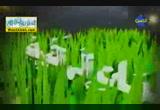 منطلقات الايمان بمراتب القدر ( 27/2/2013 ) كيف واخواتها