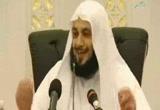 النبي صلى الله عليه وسلم زوجاً-خطب من قطر