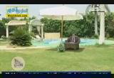 مقدمة فى وصايا النبى ( 11/7/2013 ) وصايا النبى