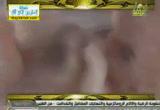 الإعجاز في خلق الإنسان 2( 18/7/2013)أفلا يتدبرون القرآن