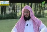 الحلقة الثامنة في حوار ممتع مع الشيخ عائض القرني( 17/7/2013)مشاهد 4