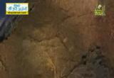 تأثير القرآن على وظائف الجسم ( 27/7/2013) أفلا يتدبرون القرآن