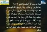 مناقب علي بن أبي طالب رضي الله عنه2 ( 27/7/2013)آل البيت رضي الله عنهم