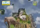 الخروف ( 2/8/2013) الحيوان يعظ