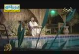 على بن ابى طالب رابع الخلفاء الراشدين  ج 2 ( 30/7/2013 ) النبلاء