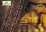 اسم الله القدوس ( 9/8/2013) غذاء الروح