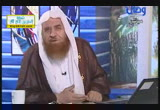 مَن المعتدي أولًا (30/10/2013) لعلهم يهتدون