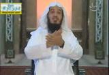 عيبك أنك تموت ( 1/11/2013) ومضات إيمانية