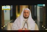 وَمَا تَسْقُطُ مِنْ وَرَقَةٍ إِلَّا يَعْلَمُهَا( 13/11/2013)على مائدة القرآن