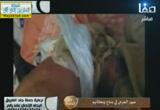 السلفيون في اليمن والإغتيالات( 23/11/2013) حملة جند الفاروق