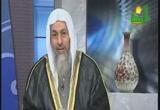 قصةسيدنا ابراهيم عليه السلام(5-2-2014)قصص الانبياء