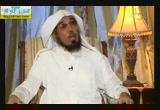 الكرم ( 26/4/2014) نبض