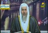 نبى الله هود ( 8/5/2014 ) قصص الأنبياء