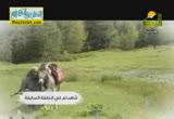 اسأل اخاك ( 30/6/2014 )  سواعد الاخاء 2