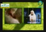 أمهات الصغار( 10/7/2014)عجائب الخلق