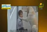 الكلب يعطى ( 8/7/2014 ) الحيوان يعطى
