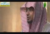 فتاوى الصحابة ومسائل الخلاف-صلاة التراويح( 11/7/2014)تاريخ الفقه الإسلامي