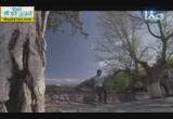 عبد الله بن سهيل بن عمرو رضي الله عنهم( 13/7/2014) أنوار الأرض