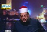 كيف التعامل مع الاسرى  ( 12/7/2014 ) مصر تجمعنا