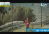 عبد الله بن عبد الله بن عبيد بن سلول رضي الله عنهم( 17/7/2014) أنوار الأرض